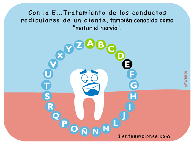 endodoncia-multirradicular